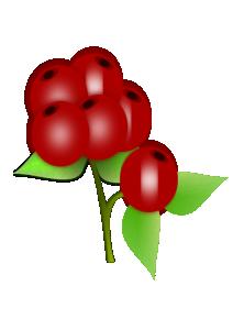 Wild Berries Clip Art.