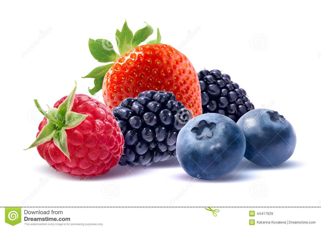 Wild Berries Group On White Background Stock Photo.