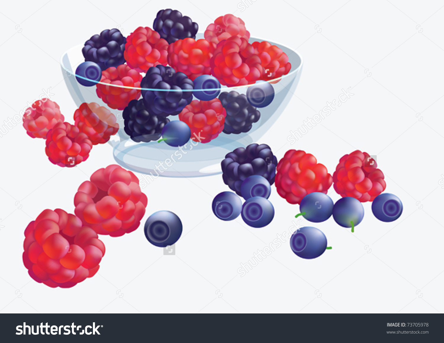 Preview Vector Eps10/ Wild Berries In A Glass Bowl.