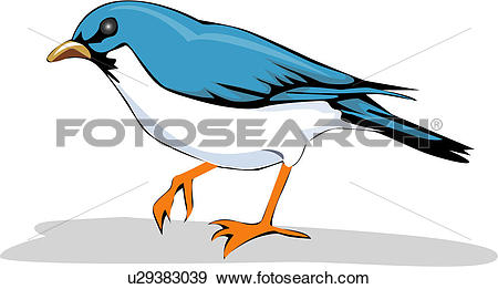 Clip Art of pet, vertebrate, wild animal, birds, bird, animal.
