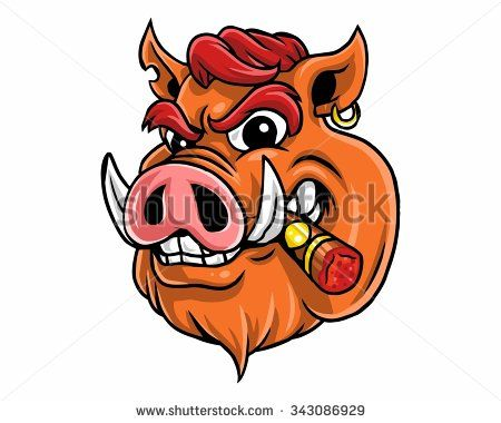 wild boar hog pig head character illustration logo icon.