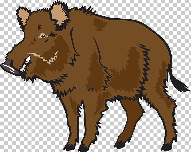 Wild Boar Common Warthog PNG, Clipart, Animal, Animals.