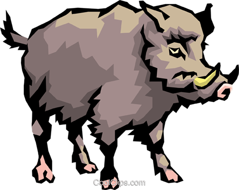 Wild boar Royalty Free Vector Clip Art illustration.