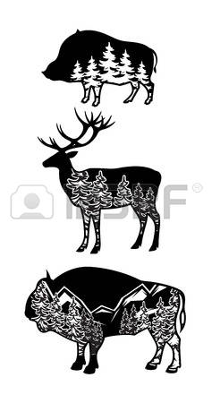 3,835 Wild Boar Stock Vector Illustration And Royalty Free Wild.