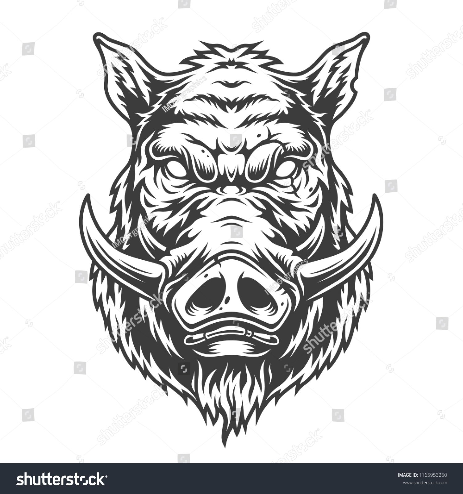 Boar head in black and white color style. Vector.