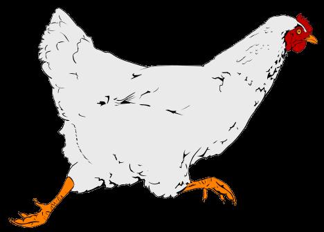 Chicken Clipart.