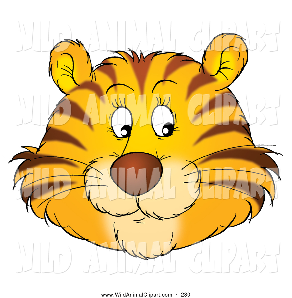 Clip Art of a Friendly Tiger Face with Whiskers, Glancing.