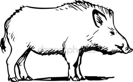 Wild boar Stock Vectors, Royalty Free Wild boar Illustrations.