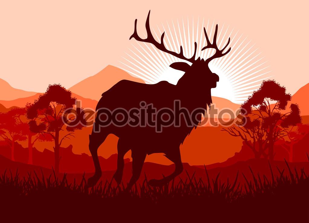 Deer in wild nature landscape illustration — Stock Vector.