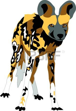 11,077 Wild Dog Stock Illustrations, Cliparts And Royalty Free.