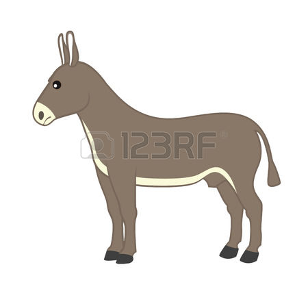821 Ass Animal Stock Vector Illustration And Royalty Free Ass.