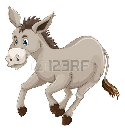 937 Wild Donkey Stock Illustrations, Cliparts And Royalty Free.