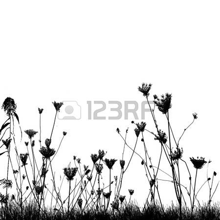 178,626 Field Stock Vector Illustration And Royalty Free Field Clipart.