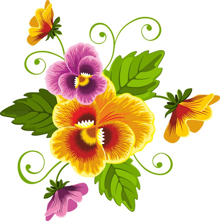 1000+ images about flores pintadas on Pinterest.
