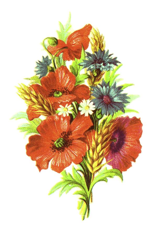 public domain vintage clipart floral bouquet with wheat.