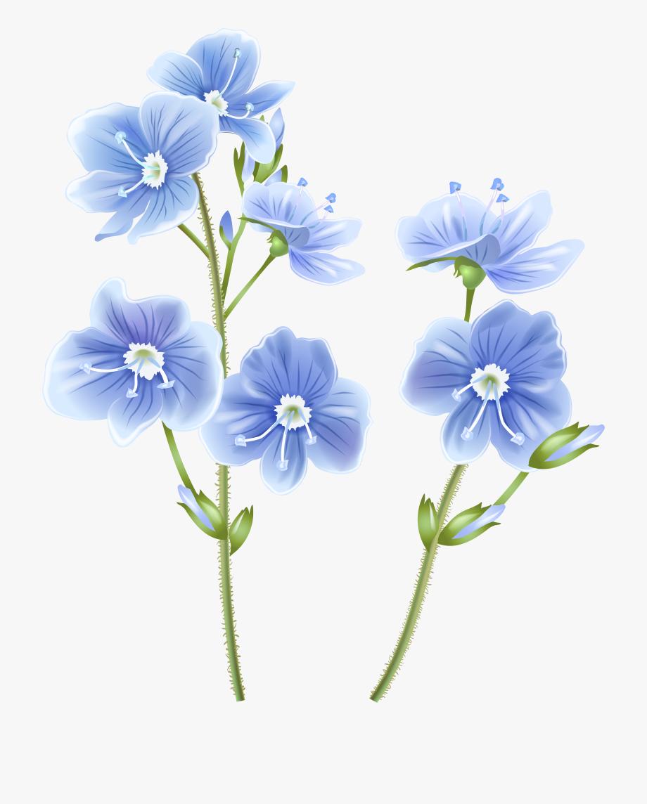 Wildflower Clipart Clip Art.