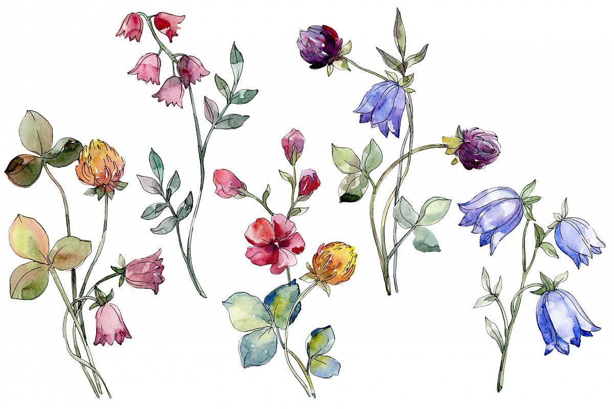 Wildflowers Watercolor png.