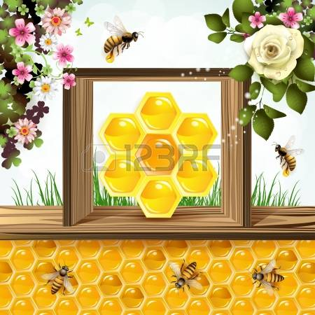 17,099 Wild Food Stock Vector Illustration And Royalty Free Wild.