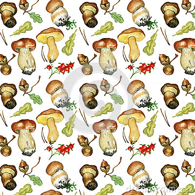 Wild Mushrooms. Hand Drawn Watercolor Painting Stock Illustration.