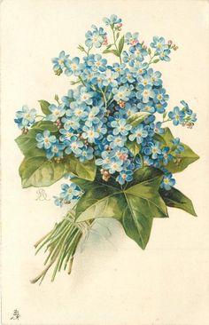 Free Vintage Flower Graphics.