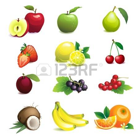 197 Wild Plum Stock Vector Illustration And Royalty Free Wild Plum.