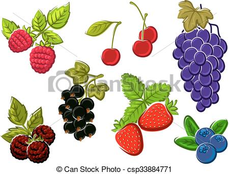 Vectors Illustration of Isolated garden and wild berries fruits.