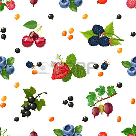 77,131 Fresh Garden Stock Vector Illustration And Royalty Free.