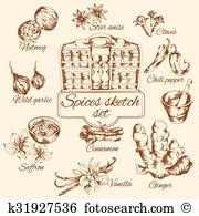 Wild garlic Clip Art and Illustration. 19 wild garlic clipart.