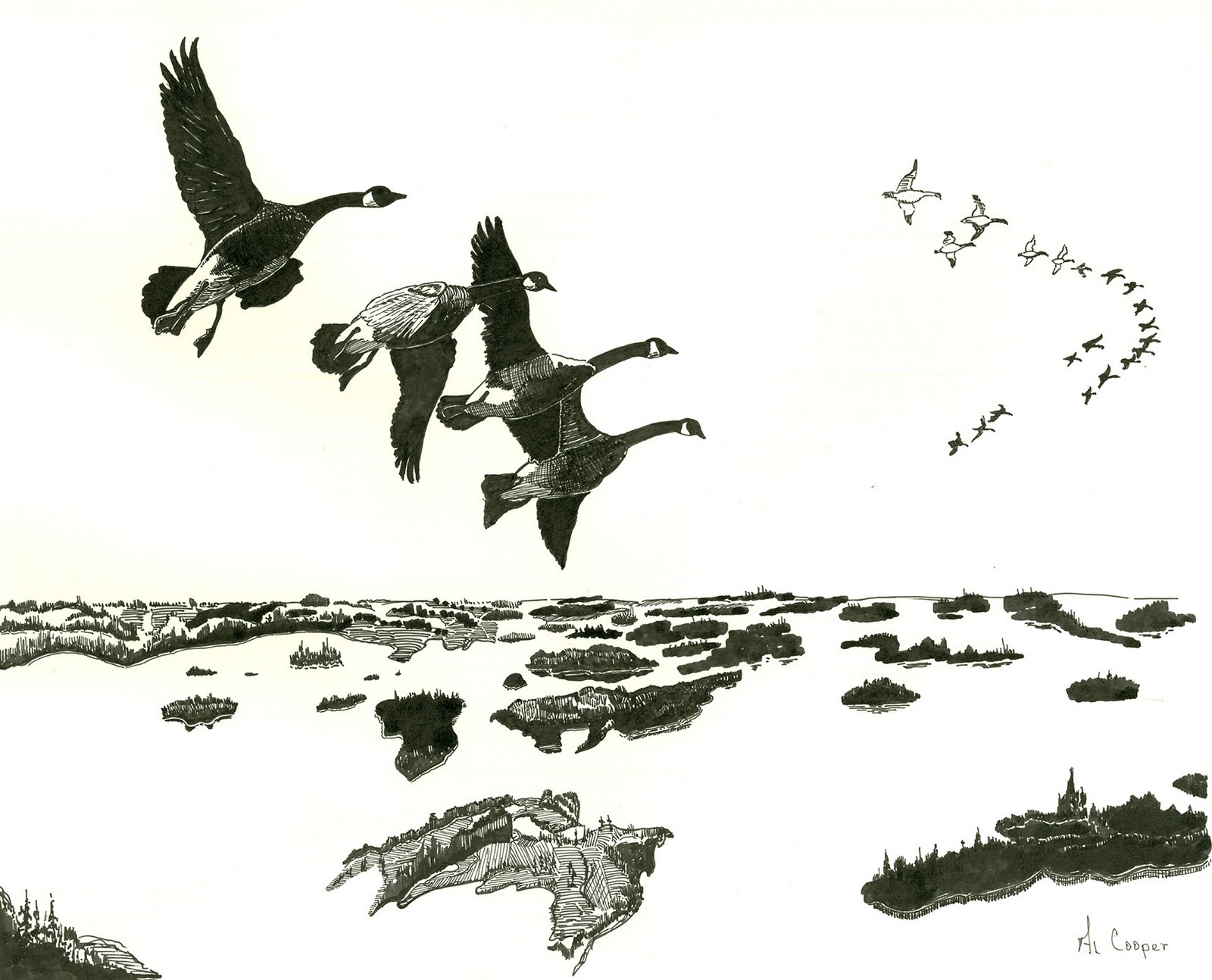 wild geese sketch.