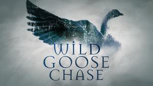 Wild Goose Chase.