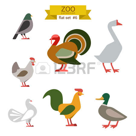 1,647 Wild Goose Stock Vector Illustration And Royalty Free Wild.