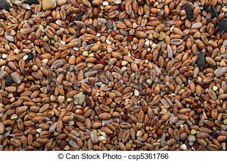 Stock Image of Wild bird food, put out in a garden to feed wild.