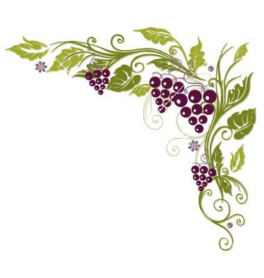 Grape Vine Border Vine grapes border vector.