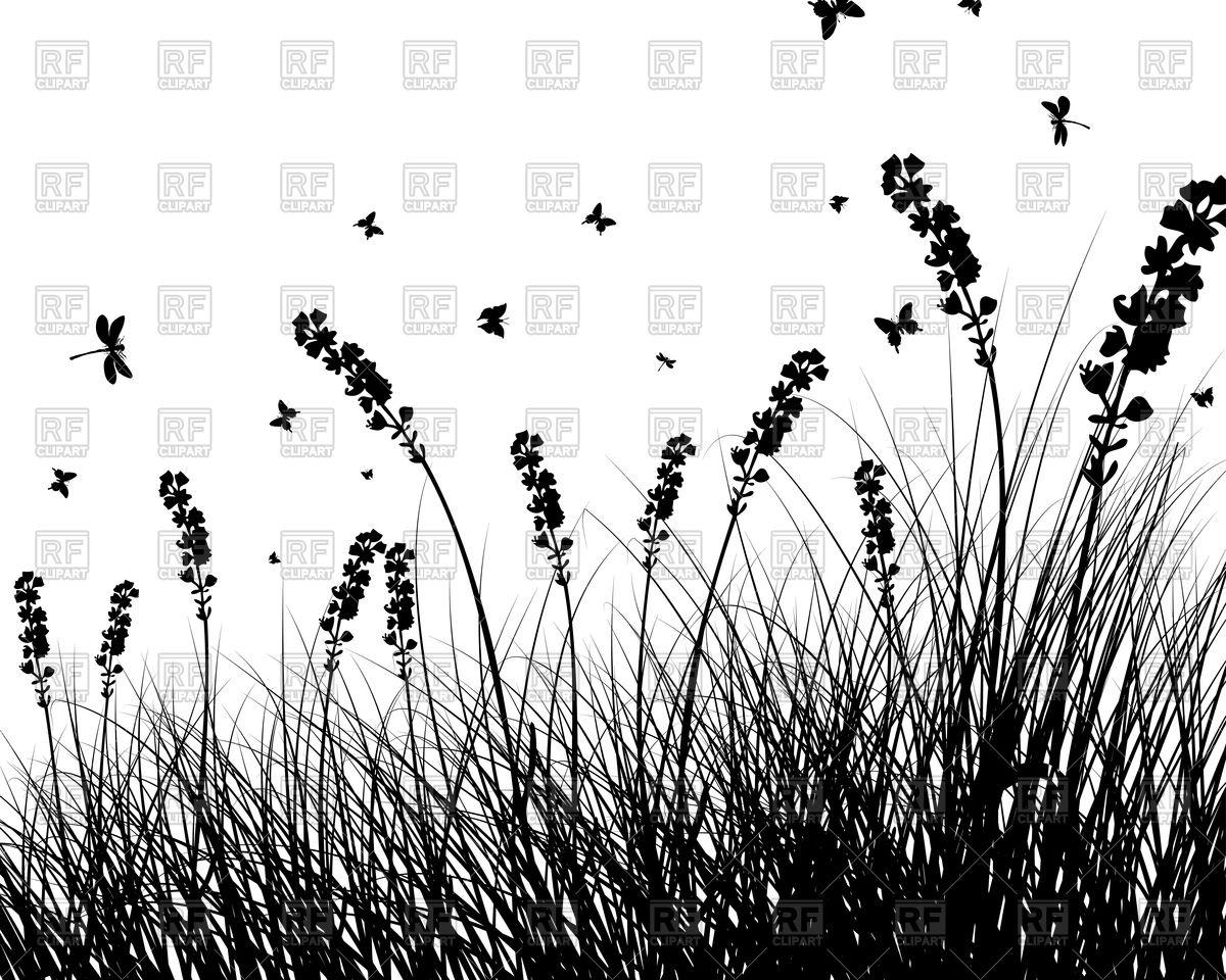 Summer wild grass silhouette Vector Image #92897.