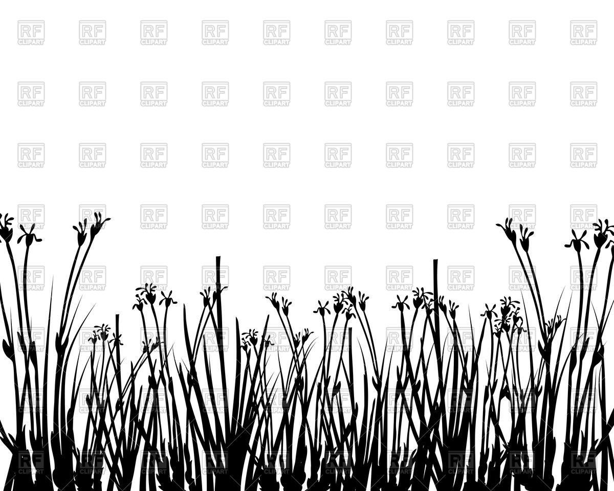 Wild grass silhouette Vector Image #82229.