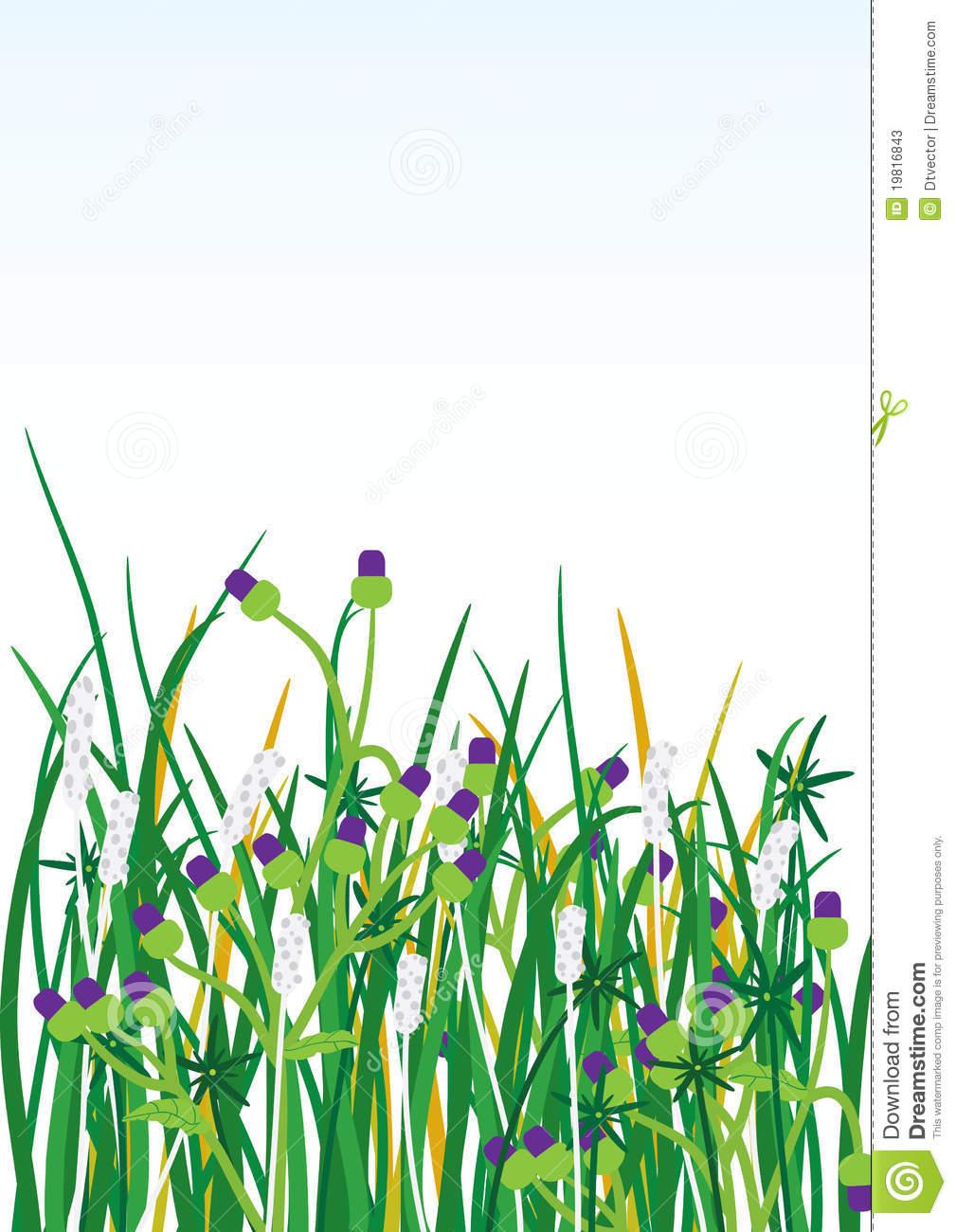 Wild Grasses Flowers Background_eps Stock Photos.