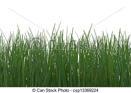 Clip Art of Wild Grass.