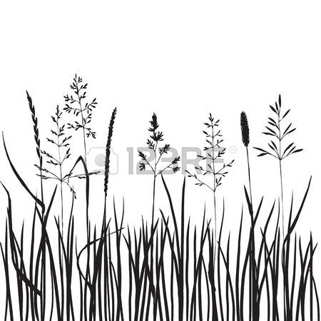 15,595 Wild Grass Stock Illustrations, Cliparts And Royalty Free.
