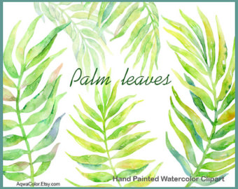 Watercolor clipart grass commercial use wild herb by AqwaColor.