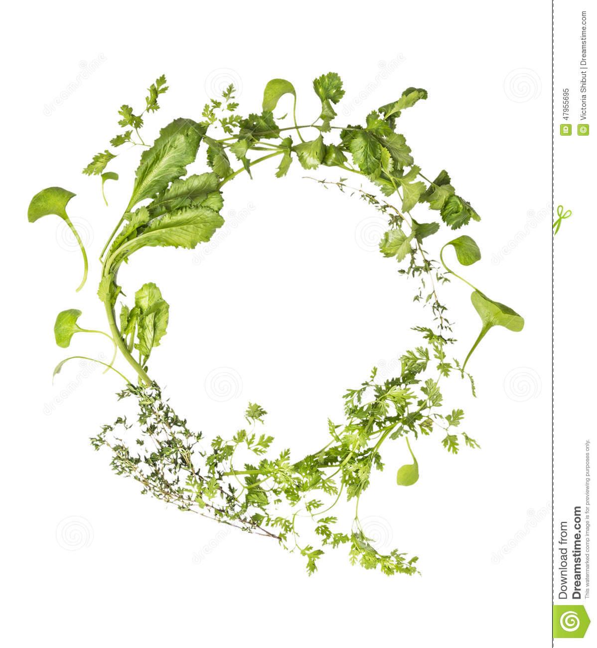 Herb wreath clipart.