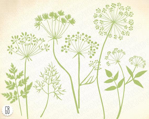 Wild herbs flowers silhouette vector clip art dandelion.