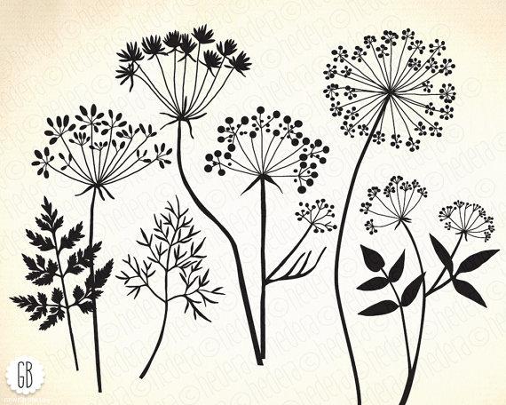 Wild herbs, flowers, silhouette vector clip art, dandelion.