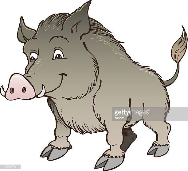 60 Top Wild Boar Stock Illustrations, Clip art, Cartoons, & Icons.