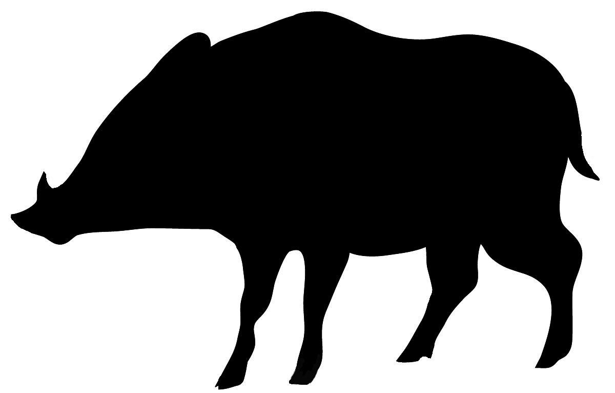 Wild boar silhouette in black..
