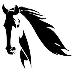 wild horse head black and white vector design.