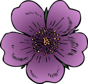 Wild Rose Clip Art.
