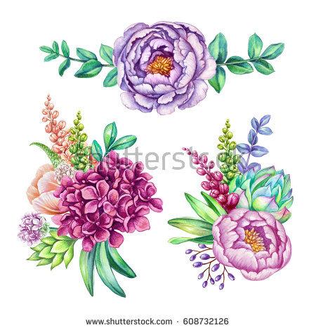 Succulent Clip Art Stock Images, Royalty.