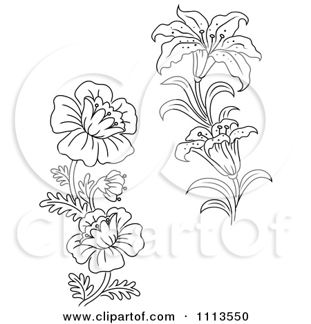 Clipart Black And White Lily And Wild Flowers.