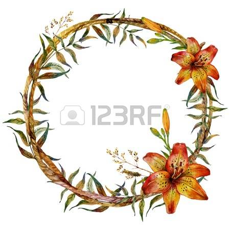 214 Tiger Lilies Cliparts, Stock Vector And Royalty Free Tiger.