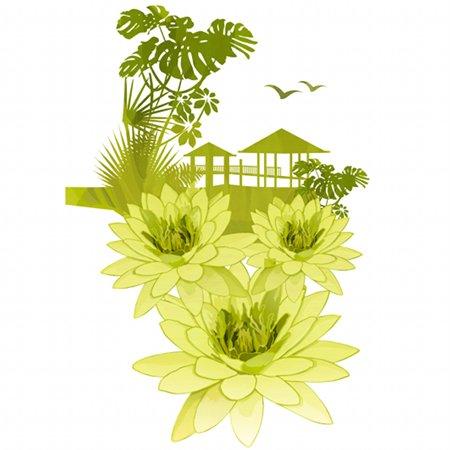 Amazonian Wild Lily.